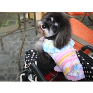 犬のジャケット【Jazzy Girl】犬用ジャケット/フリースジャケット/マジックテープ仕様/犬服/犬の洋服 wanwan3dogs 02