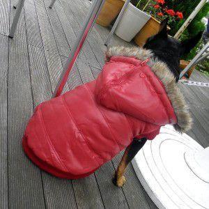 犬のコート【Red Split Hoodie】ファーコート/フード変形可/ファー取り外し可/犬用コート/ペットのコート/犬服/犬の洋服|wanwan3dogs