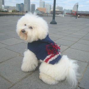 送料無料♪犬のセーター【トリコロール】手編みセーター/犬のニット/ペットセーター/犬服/犬の洋服|wanwan3dogs