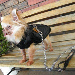 犬のジャケット【ミリタリー ボンバージャケット 75001_ブラック】犬 ミリタリー/犬 ベスト/犬 ジャケット/リード取り付け可能/ネームタグ付き/犬 服|wanwan3dogs
