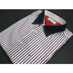 バジエ 長袖シャツ 2120-1003-11 VAGIIE|wanwan