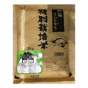 熊本県産 特別栽培米 阿蘇 コシヒカリ 2k 九州のお米  |  2キロ 安心 安全 お米 ブランド米 ブランド おいしい 美味しい ご飯 熊本県 九州 米|wao-shop