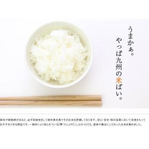 熊本県産 特別栽培米 阿蘇 コシヒカリ 2k 九州のお米  |  2キロ 安心 安全 お米 ブランド米 ブランド おいしい 美味しい ご飯 熊本県 九州 米|wao-shop|02