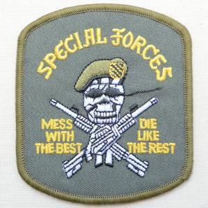 ミリタリーワッペン Special Forces スカル アメリカ陸軍 PM0364|wappenstore