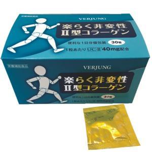 楽らく非変性II型コラーゲン|waseda