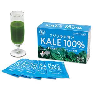 フジワラの青汁粉末タイプ|waseda