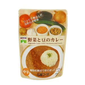 野菜と豆のカレー(5袋セット)|waseda