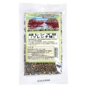 緑レンズ豆(フレンチ種)|waseda