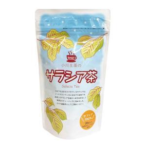サラシア茶|waseda