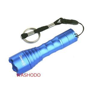 GOREAD (ゴレード)電池式 ミニLED懐中電灯 単三電池1本使用 「800-0014」|washodo