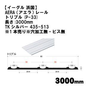 AERA (アエラ) レール【イーグル】 ハマクニトリプルP-33-3000mmTKシルバー 435-513 wasitu-reform