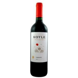 ■ コイレ グラン レゼルバ カルメネール 2013 赤ワイン wassys