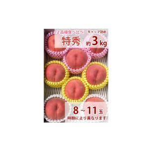 福島の桃 贈答用 2品種食べ比べセット(早生種 中生種 晩生種 極晩生種 極々晩生種の中から1種)特秀品 3kg 8〜11玉入り 送料無料|watanabe-kajuen