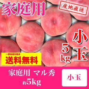 福島の桃 家庭用 小玉 極晩生種(彼岸白桃・さくら白桃) 品...