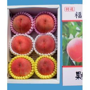 福島の桃 贈答用 食べ比べセット 早生種〜極々晩生種 7月中下旬から10月上旬まで全5回お届け 特秀品 2kg 5〜6玉入り 送料無料|watanabe-kajuen|02