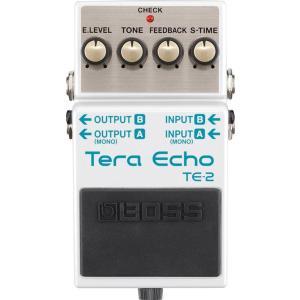 TE-2は、ローランドの独自技術により、リバーブでもディレイでもない、新感覚の広がりと動きを生み出し...