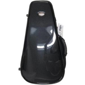 bags(バッグス) この価格在庫限り! トランペット用 ケース スペイン製 ハードケース EFTR リュックタイプ 管楽器 エボリューション トランペットケース