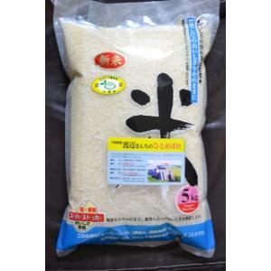 エコEMひとめぼれ白米5kg令和1年千葉県産