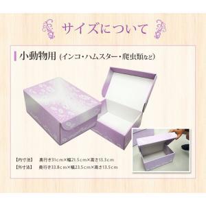 ペットの棺「紫苑」小動物用 ダンボール 組立式 安心の全部入り お見送りセット|watasinoseikatu|02