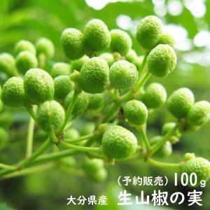 山椒の実 100g 2019年度産 実山椒 青山椒 生山椒 さんしょう|watasyoku