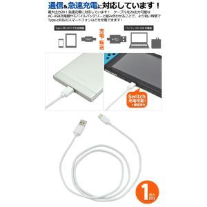 USB Type-Cケーブル 1m USB タイプCの詳細画像1