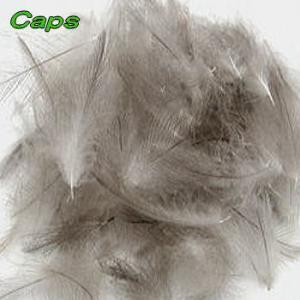 CAPS CDCフェザー バルグパック|waterhouse