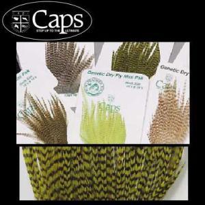 CAPS ドライフライ ハックル ミニパック #10〜12|waterhouse