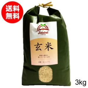 無農薬玄米 まっしぐら 3kg 29年度 送料無...