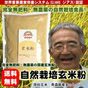 無農薬玄米粉 500g 29年度 グルテンフリー 送料無