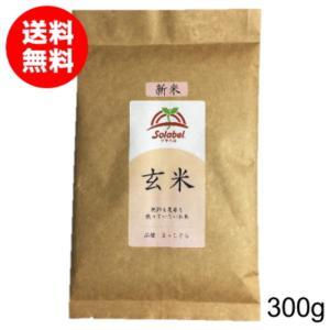 無農薬玄米 まっしぐら お試し 300g 29年度 送料無...
