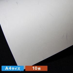 A4サイズしこくてんれい白(10枚)