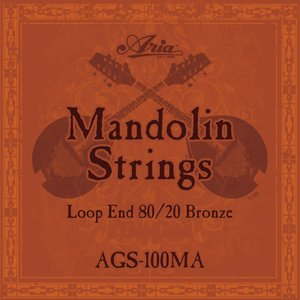 Aria AGS-100MA Mandolin Strings 《マンドリン弦》【ネコポス】