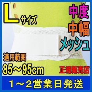 腰痛ベルト ウエストサポート 袋パッケージ L アシスト 腰...