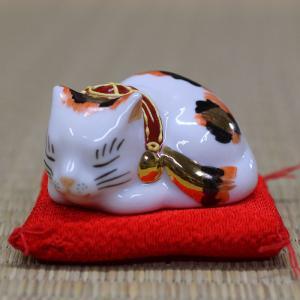 平和を愛する ちび眠り猫 金三毛ちゃん♪|waza