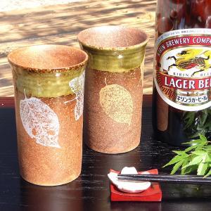 結婚祝いプレゼント 泡まで旨い 陶器 ペア ビールグラス|waza
