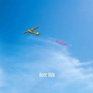 Deer Tick - Negativity (レコード盤)