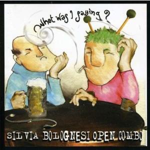 【タイトル】 What Was I Saying?  【アーティスト】 Silvia Bologne...