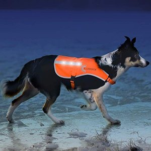 Illumiseen犬用LEDベスト 反射材 USB充電式 ライト 安全ジャケット オレンジ 野外で散歩 ウォーキング トレーニング|web-mark