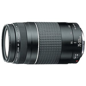 Canon キヤノン EF カメラ レンズ EF75-300mm F4-5.6 III ズームレンズ 望遠 並行輸入品