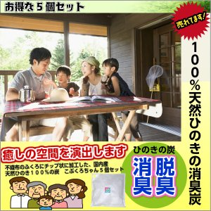 天然ヒノキ100% こぶくろちゃん脱臭炭5個セット|web-takigawa