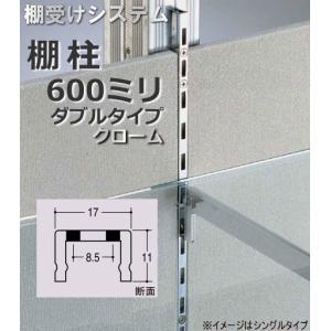 棚受け金具 棚柱(支柱レール) ダブルタイプ600ミリ|web-takigawa