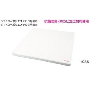 投込みマット[品名:投込みマット STE3][サイズ(cm):幅180×長180×厚10]