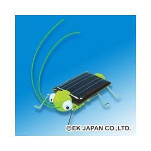 ※環境にやさしい太陽光発電と、携帯電話にも使われている振動モーターで動くバッタのキットです。 背中の...