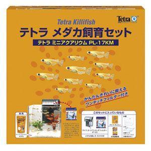 スペクトラムブランズ テトラ ジャパン ミニアクアリウム PL17KF メダカセット 715039|webby