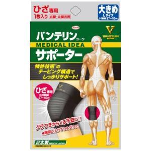 興和新薬 バンテリンサポーター ひざ専用 大...の関連商品10