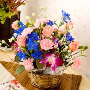 バラ 薔薇 デュマン|webflora