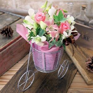 誕生日プレゼント ピーチサイクル 洋ラン 洋蘭 webflora
