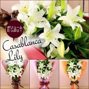 カサブランカリリー|webflora