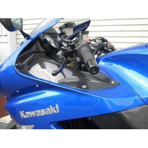 Kawasaki ZZR1400 ZX-14R Titanium Disc Bolts Full Set 06 on ZX14 Ti Rotor Bolts