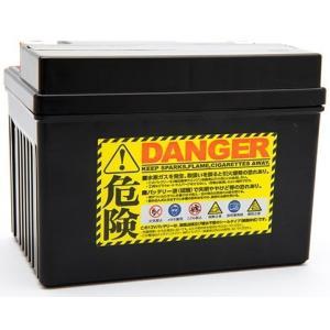 プロセレクトバッテリー Pro Select Battery オートバイ用バッテリー HONDA EZ-9|webike02|02